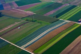 Fields with different crops seen from the air: GMO? Organic?